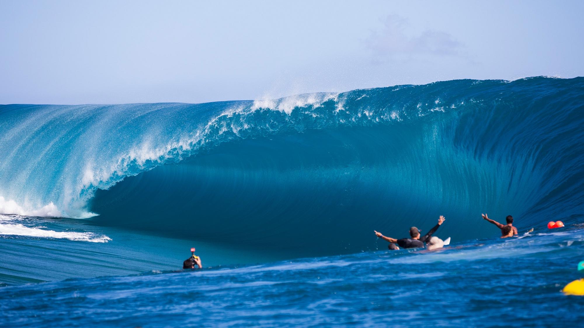 polski surfer